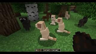 Играем в майнкрафт, мод на породы собак