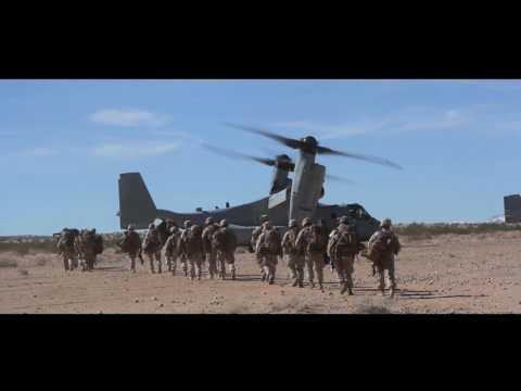 ITX 2-17: FINEX 1st Battalion, 7th Marines