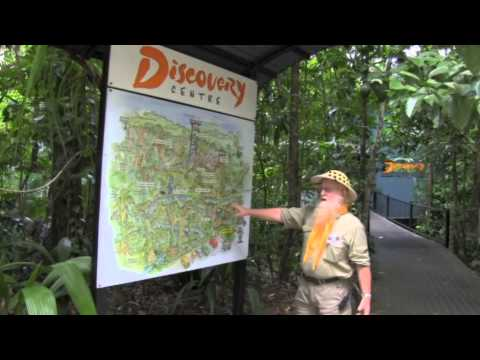 Welcome to the Daintree Discovery Centre