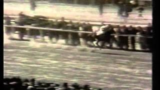 Yatasto Archivo Hipódromo De San  Sidro