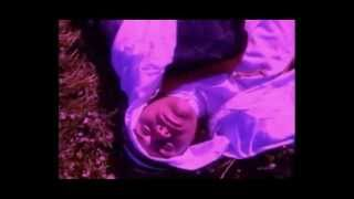 """Dario Formica - """"Desert Girl"""" Music Video (Psychedelic Version) FUNCTION X2DS"""