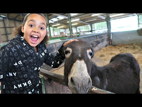 Kids Family Trip To The Farm Feeding Animals - Playground Fun - Kids Educational video