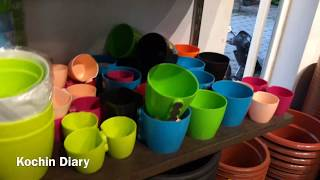 My plant shopping (മലയാളം) | Plant shop in kochi | Indoor plants shop