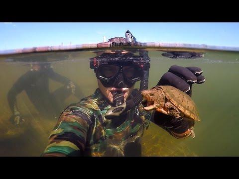 Found Knife, Razor Blade and $50 Swimbait Underwater in River! (Freediving)   DALLMYD