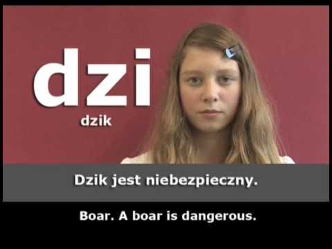 Polish Pronunciation Guide