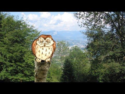 Versini - Dans la forêt lointaine - YourKidTv
