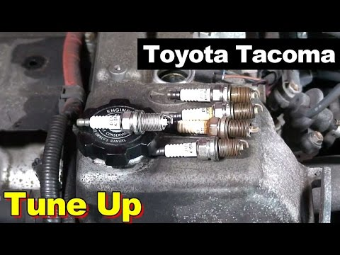 2004 Toyota Tacoma Tune Up