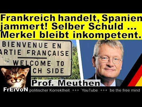 Frankreich handelt, Spanien jammert! Selber schuld ... Merkel bleibt inkompetent * Meuthen * HD