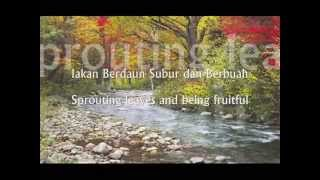 Hati Yang Gersang (Withered Hearts) Nasheed By Nada Murni
