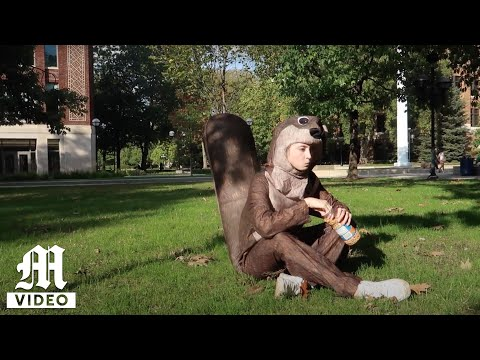 Becoming One with the Diag Squirrels