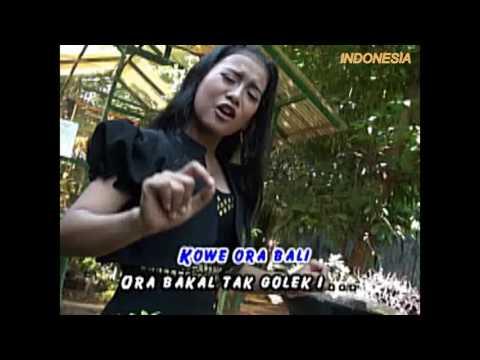 GORO  GORO DHALANG - DWI KUMALA - OM RAJAWALI MUSIC