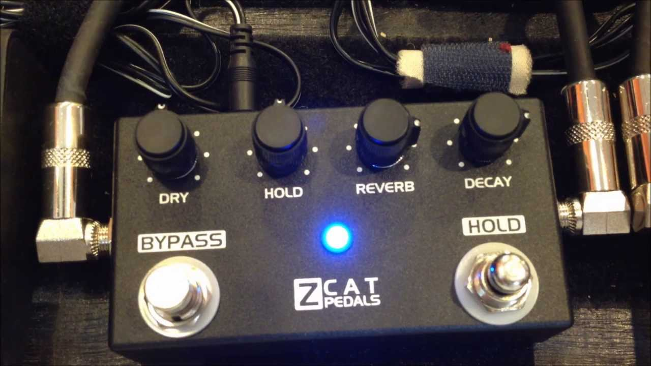 Z Cat Pedals Z Cat Pedals Hold - Reverb
