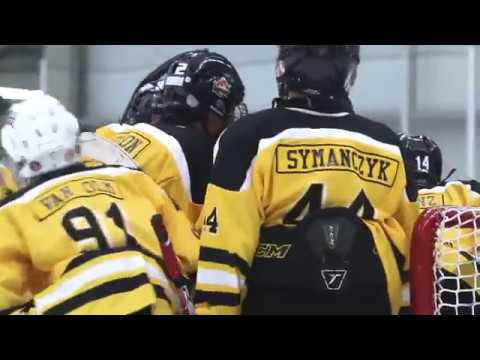 Inspirational Hockey video