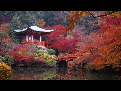 Japan Fall Colors Wallpaper Exquisite Places Around The World To See Brilliant Fall