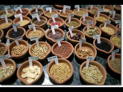 Saving the Heritage Heirloom Seeds with John Moore from Seeds of Life Japan