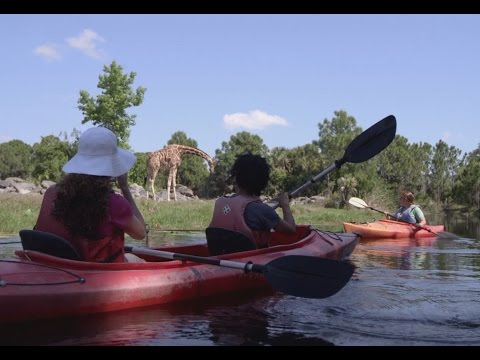 Florida Travel: Kayak Through Africa at the Brevard Zoo