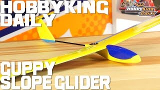 Guppy Balsa Slope Glider - Hobbyking Daily