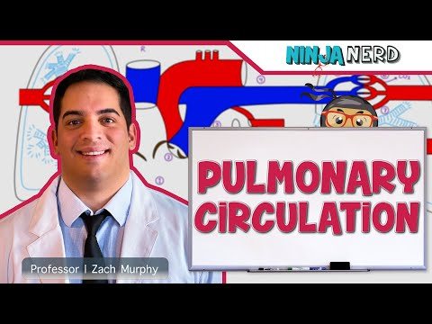Circulatory | Pulmonary Circulation