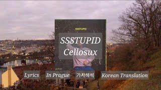 [가사/해석] SSSTUPID - Cellosux | 자기야, 난 멍청해