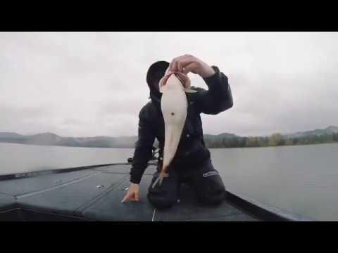 Bass Fishing At The Southern Oregon Coast