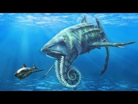 STRANGEST Prehistoric Sharks That Ever Lived!