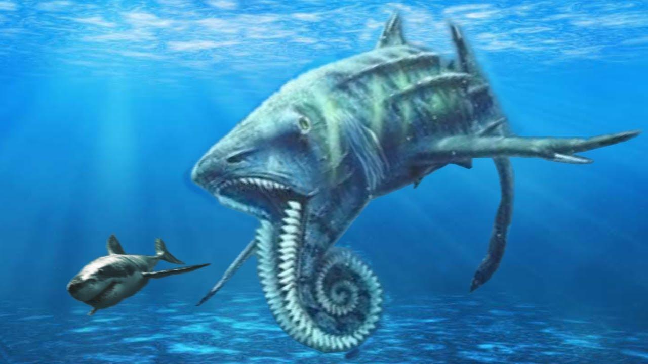 10 Strangest Prehistoric Sharks That Ever Lived Youtube