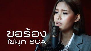 ขอร้อง - แดน วรเวช | Cover | SCA STUDIO | ไข่มุก SCA ( The Voice Thailand )