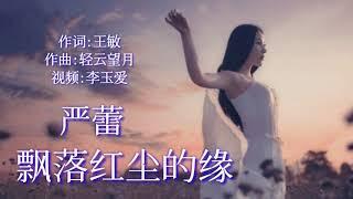 Download lagu 《飘落红尘的缘》 演唱:严蕾