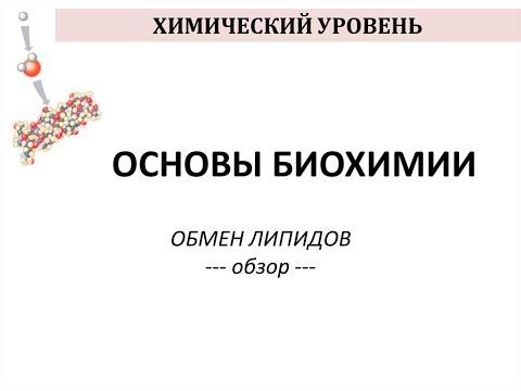 Официальный сайт THOMAS в России