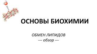 ОБМЕН ЛИПИДОВ -  часть 1 - Просто о сложном - Химия