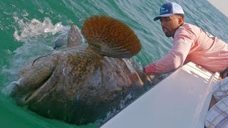 Fishing for Huge Groupers and Sharks with NBA Forward Wilson Chandler - ft. Chew On This - 4K