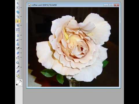 Adding copyright symbol and name to digital photo