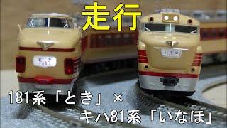 鉄道模型Nゲージカントレール走行 KATO 181系100番台「とき」×キハ81系「いなほ」