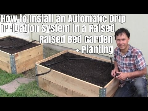How to Install a Automatic Drip Irrigation System in a Raise