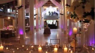 Susan Cordogan Celebrity Chicago Wedding Planner Big City Bride