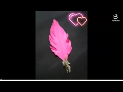 DIY paper feather pen by Prabhleen Kaur😊😊😊😊😊😊😊