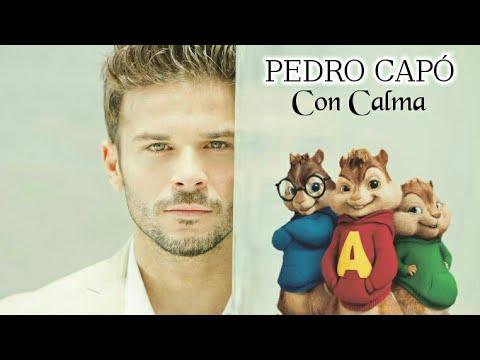 CALMA - Cover Alvin Y Las Ardillas - PEDRO CAPO  FARRUKO