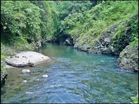 _The logsungon River_.wmv
