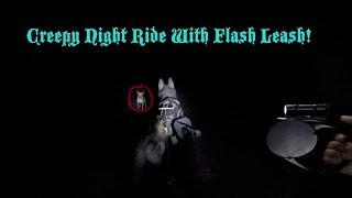 Using A Flash LED Leash To Exercise My Siberian Husky AT NIGHT!!