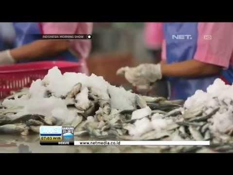 Geliat Industri Pengalengan Ikan Muncar di Banyuwangi - IMS