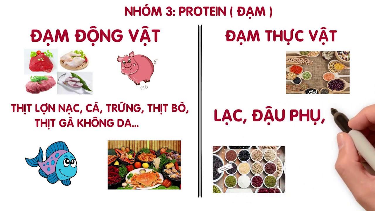 4 Nhóm Dinh Dưỡng, Tâng Xinh