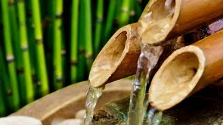 BAMBOO WATER FOUNTAIN | Relax & Get Your Zen On | White Noise | Tinnitus Relief