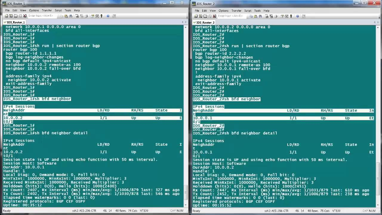 BFD Configuration and Troubleshooting on Cisco IOS and XR Routers