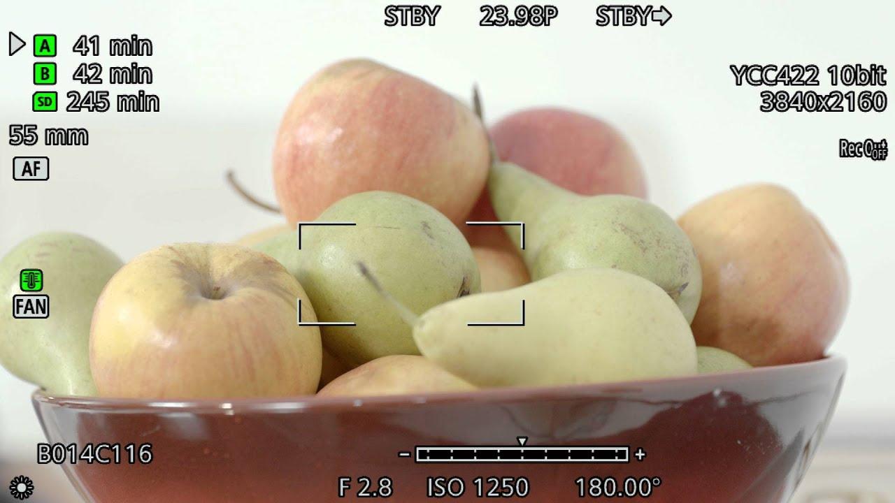 Canon EOS C300 Mark II Tutorial Series: Focus Assist Features