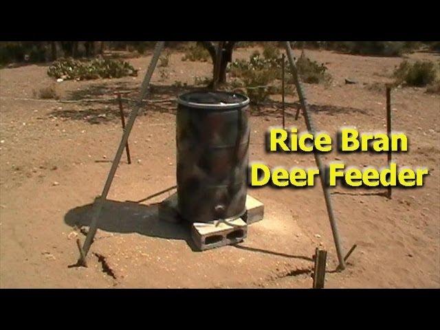 Rice Bran Deer Feeder Design (not good if you have hogs