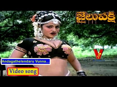 Andagathelendaru Vunna | Jailu Pakshi Movie Songs | Shoban Babu | Jayamalini | Anuradha | V9 videos thumbnail
