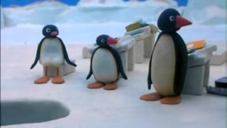Kijk Pingu op school filmpje