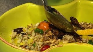 Insects making eco-friendly buzz in Dutch kitchens