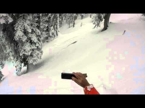 Skiers Encounter Leopard in Snow