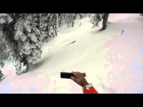 Skiers Encounter Leopard in Snow